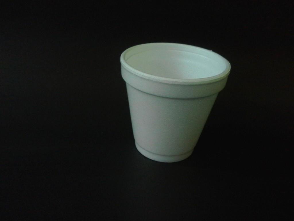 Vaso termico 120